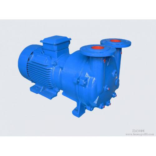 2BV5121真空泵